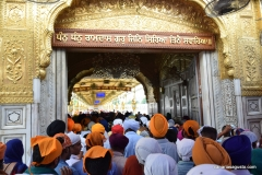 Amritsar - Templo de Oro - Haciendo cola para entrar (1)