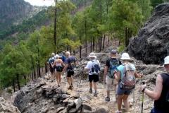 16KM - Data de las Ninas - Vuelta a la Sandara - Gran Canaria (5)