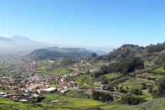 Bosque-Encantado-Anaga-Tenerife-1