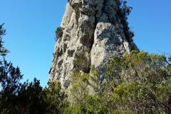Bosque-Encantado-Anaga-Tenerife-12