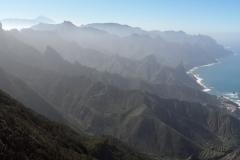 Bosque-Encantado-Anaga-Tenerife-15