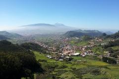 Bosque-Encantado-Anaga-Tenerife-2
