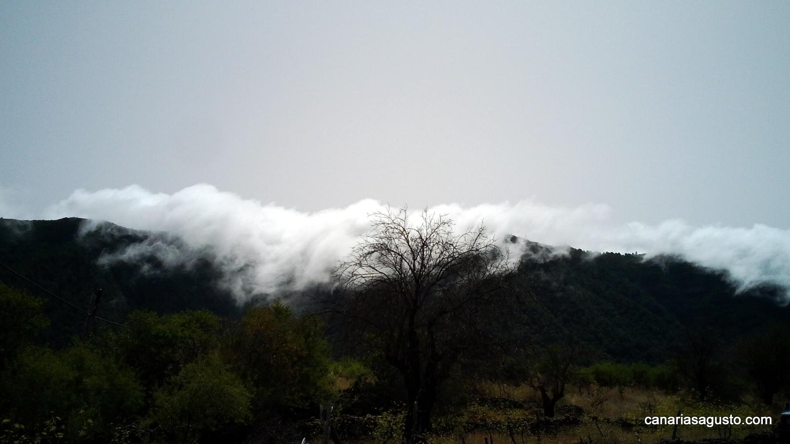 Alisios de La Palma