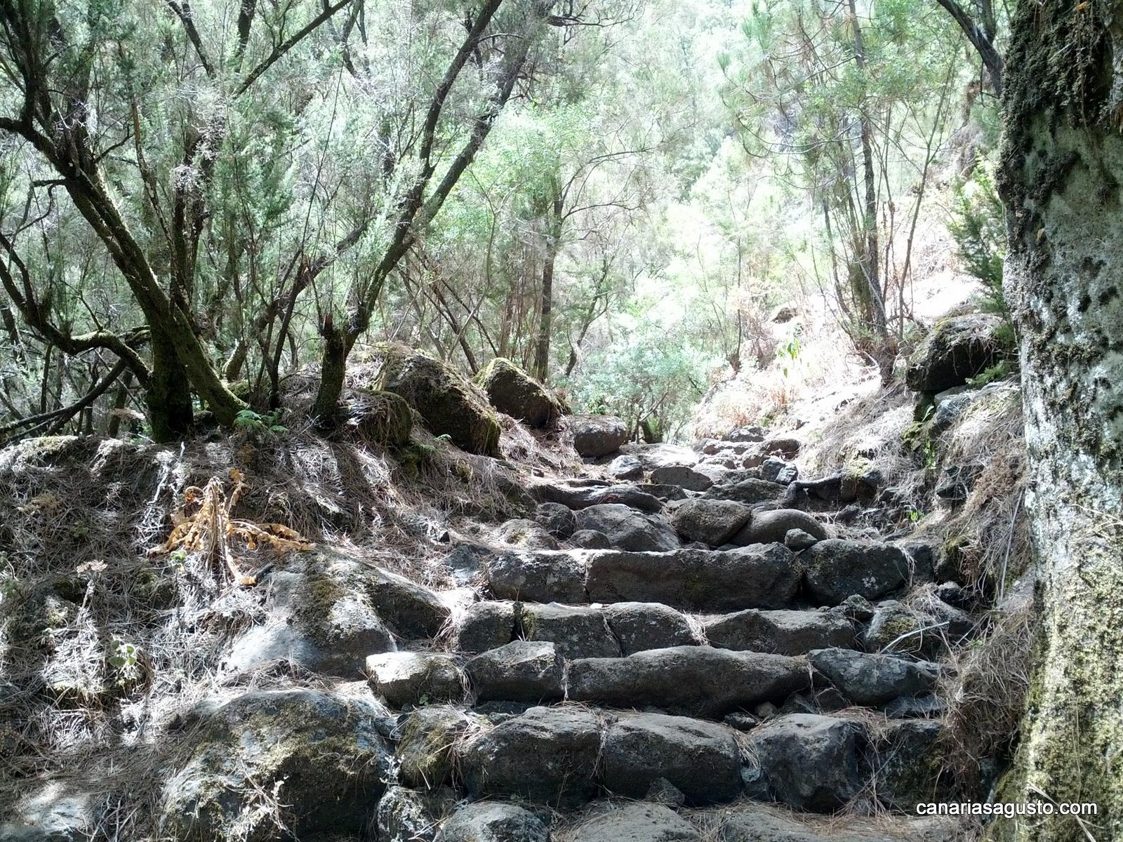 Sendero Marcos y Cordero - La Palma