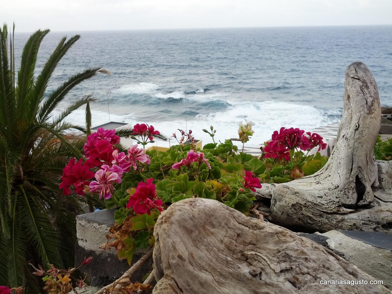 La-Palma-Islas-Canarias-Agosto-2013-61