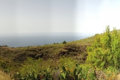 La-Palma-Islas-Canarias-Agosto-2013-101