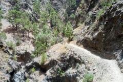 Barranco de Angustias - La Palma