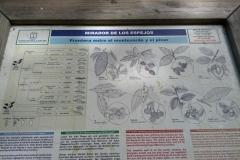 La-Palma-Islas-Canarias-Agosto-2013-46