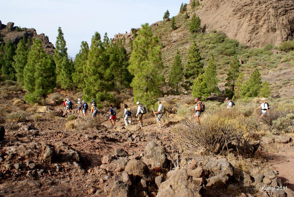 Descenso en grupo desde Roque Nublo
