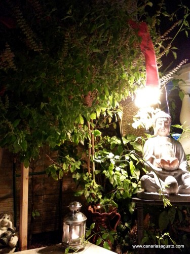 Tulsi Vivah en Casa