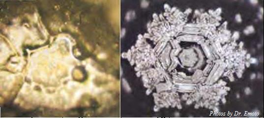 Izq: - Cristalización de agua contaminada - Derecha: - Cristalización de la misma agua después de una bendición.