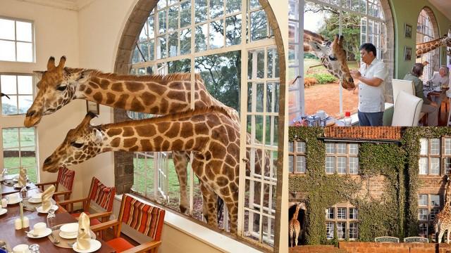 Giraffe Manor, Kenya - giraffemanor.com