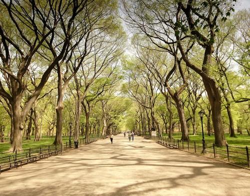 Central Park, Nueva York - USA