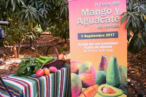 II Feria del Mango y Aguacate de Verano