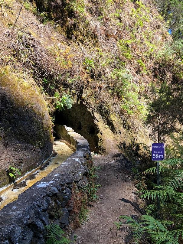 Ruta Marcos y Cordero - Tunel 10