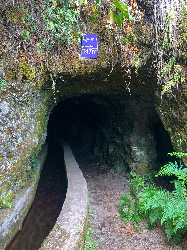 Ruta Marcos y Cordero - Tunel 3